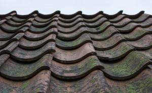 Prenez soin de votre toiture